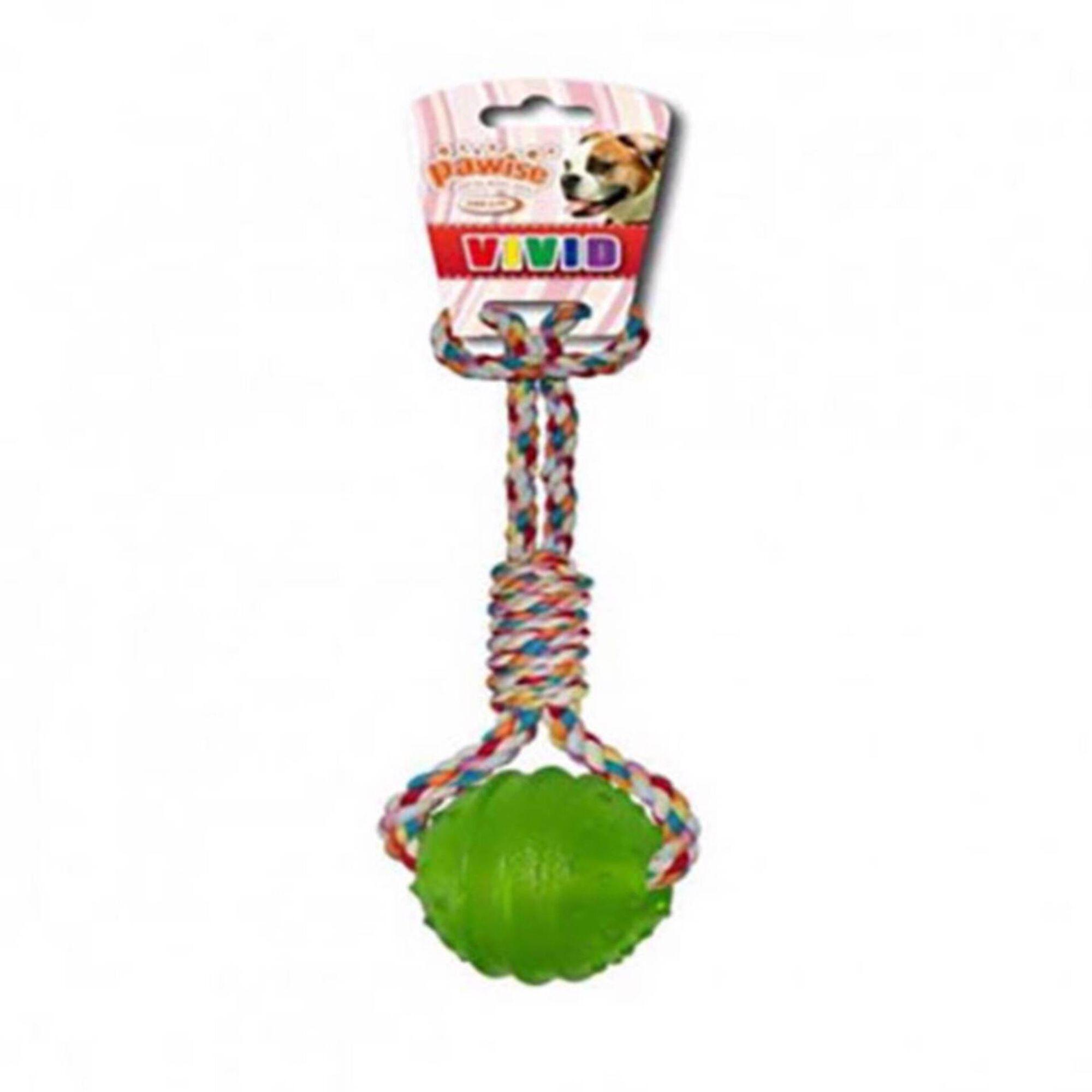Brinquedo para Cão Pega TPR com Corda 6,3 cm