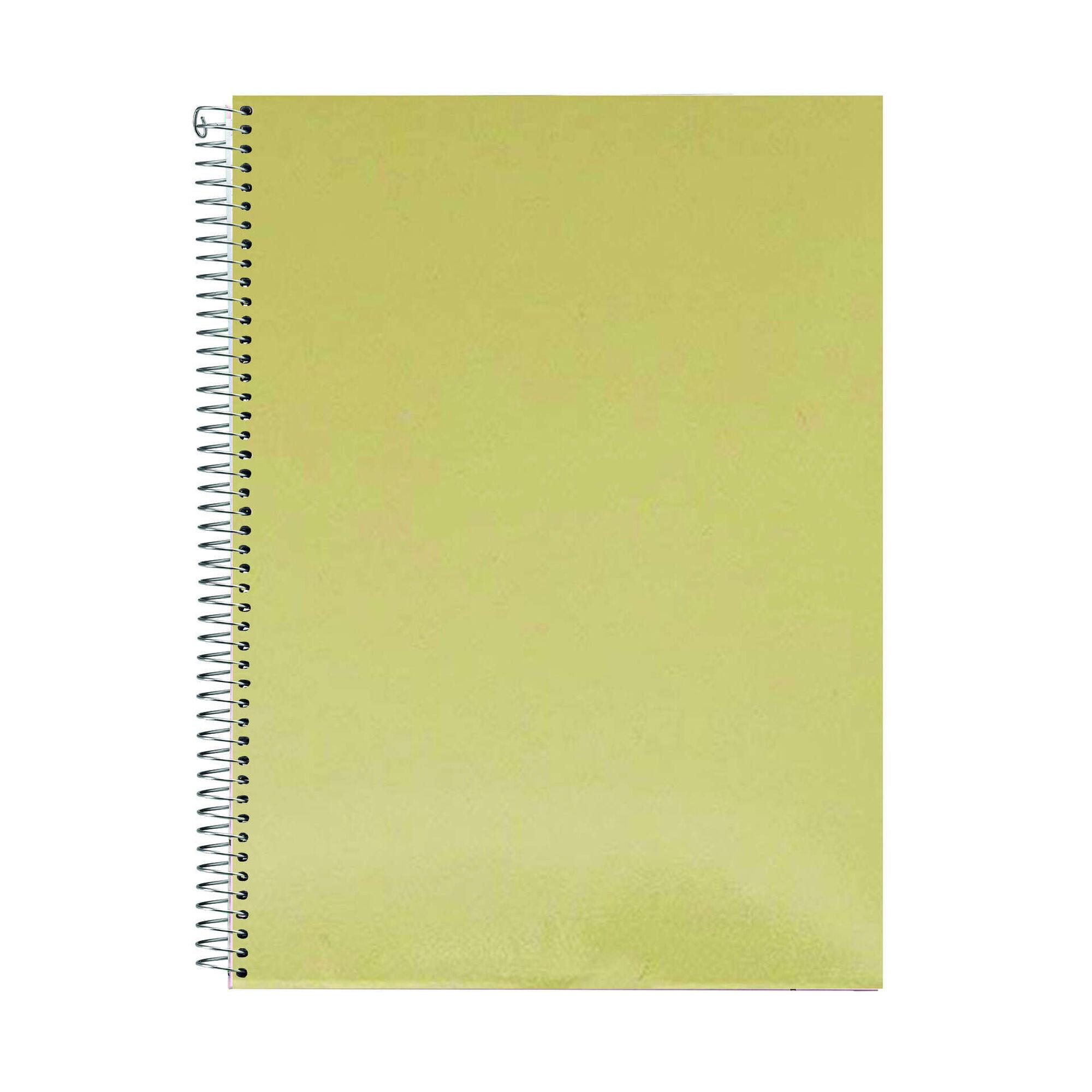 Caderno Espiral A4 Pautado