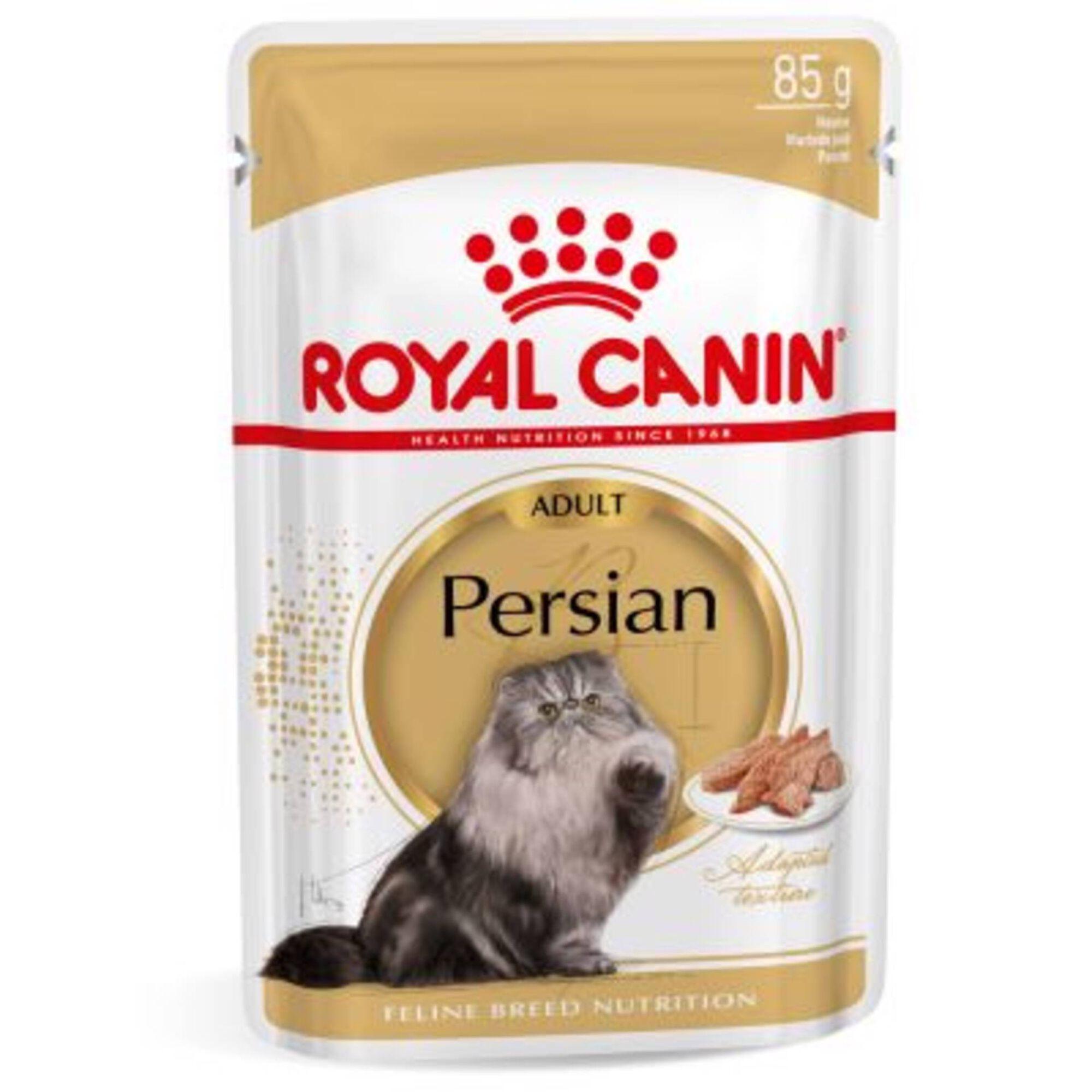 Comida Húmida para Gato Persa