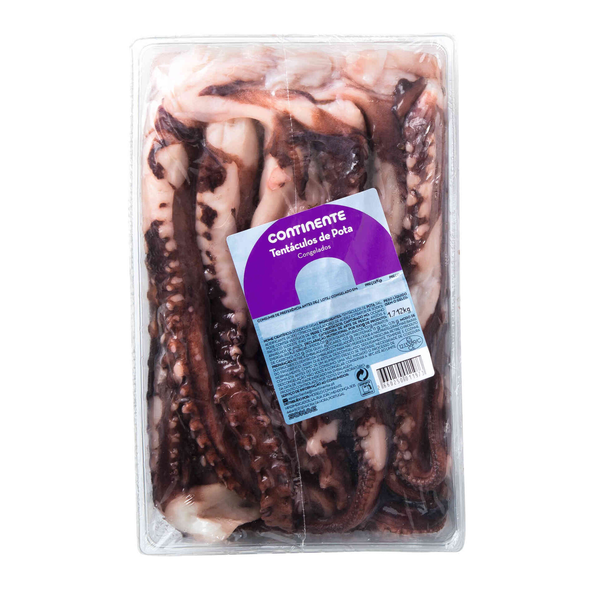 Tentáculos de Pota Congelados