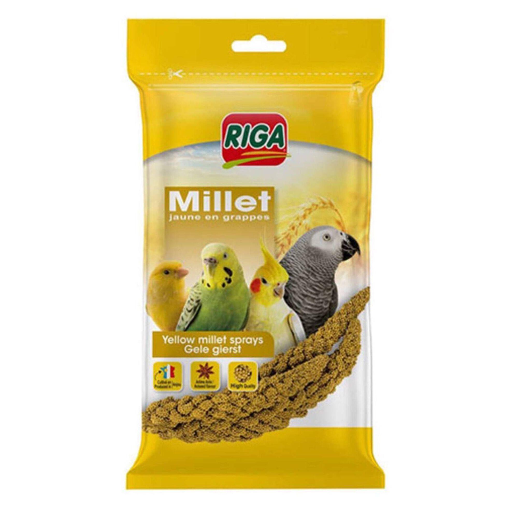 Comida para Ave Millet