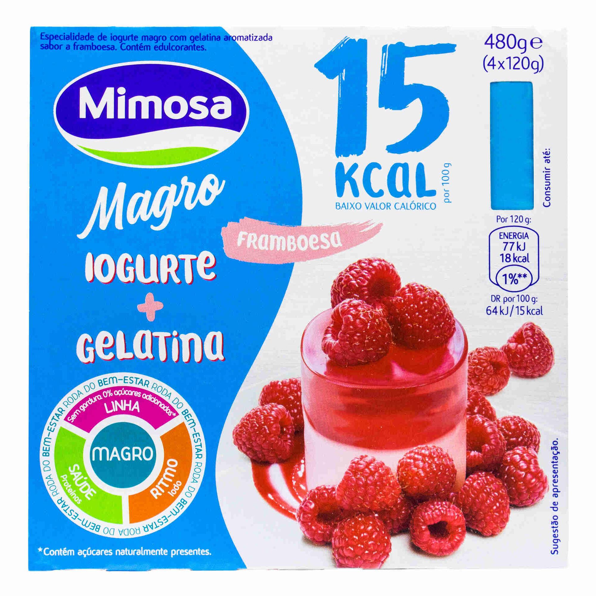 Iogurte e Gelatina Magro Framboesa