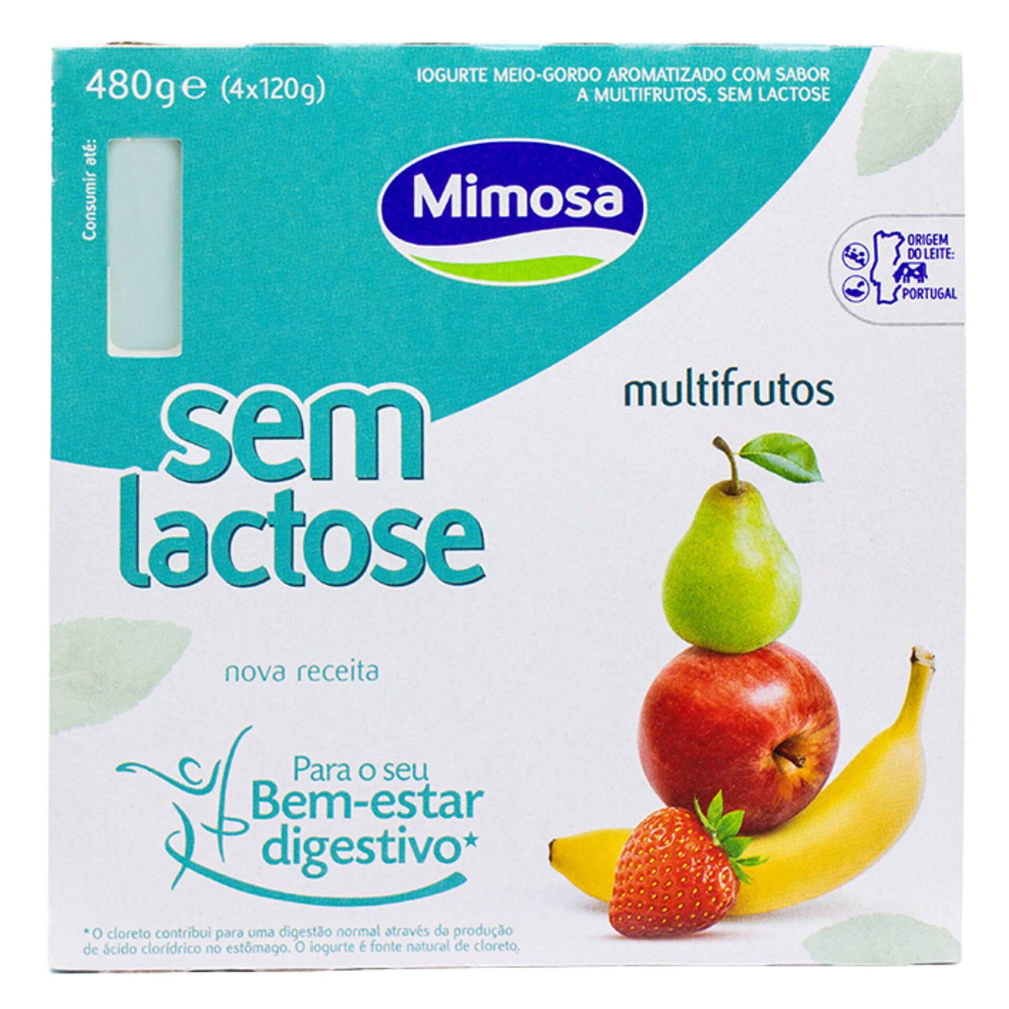 Iogurte sem Lactose Multifrutos