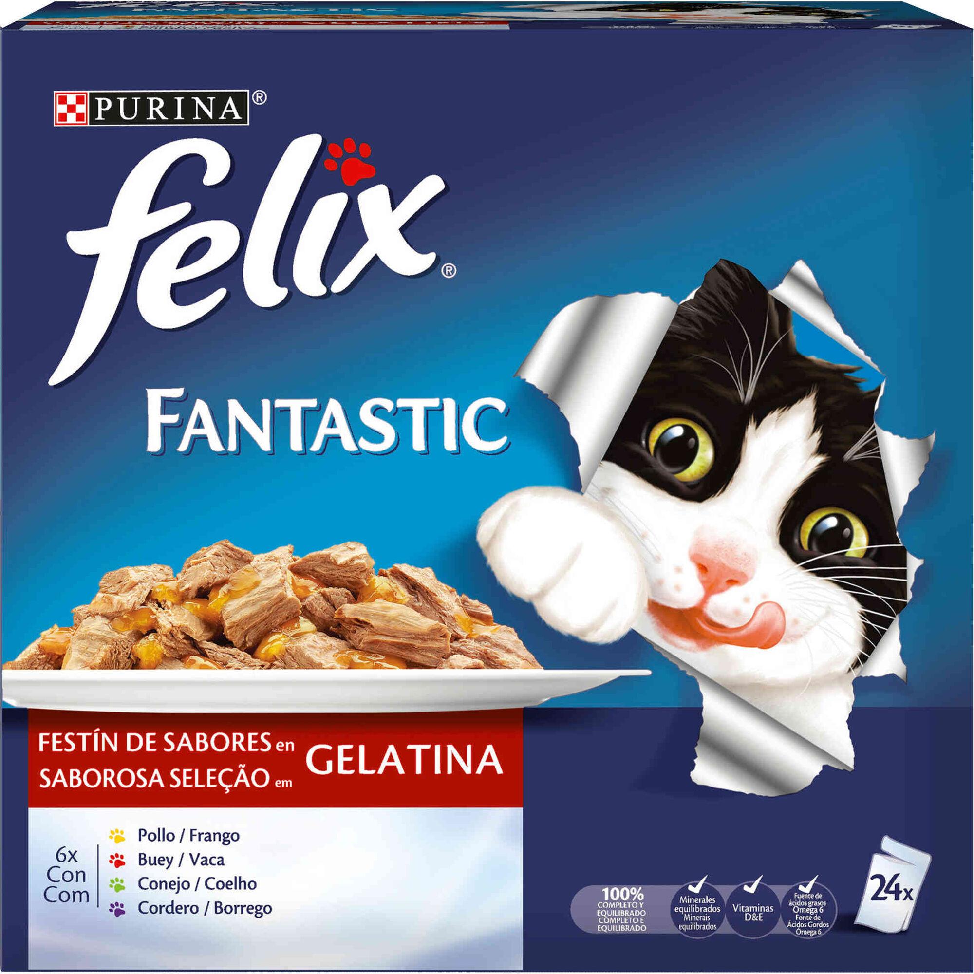 Comida Húmida para Gato Adulto Carne Saquetas