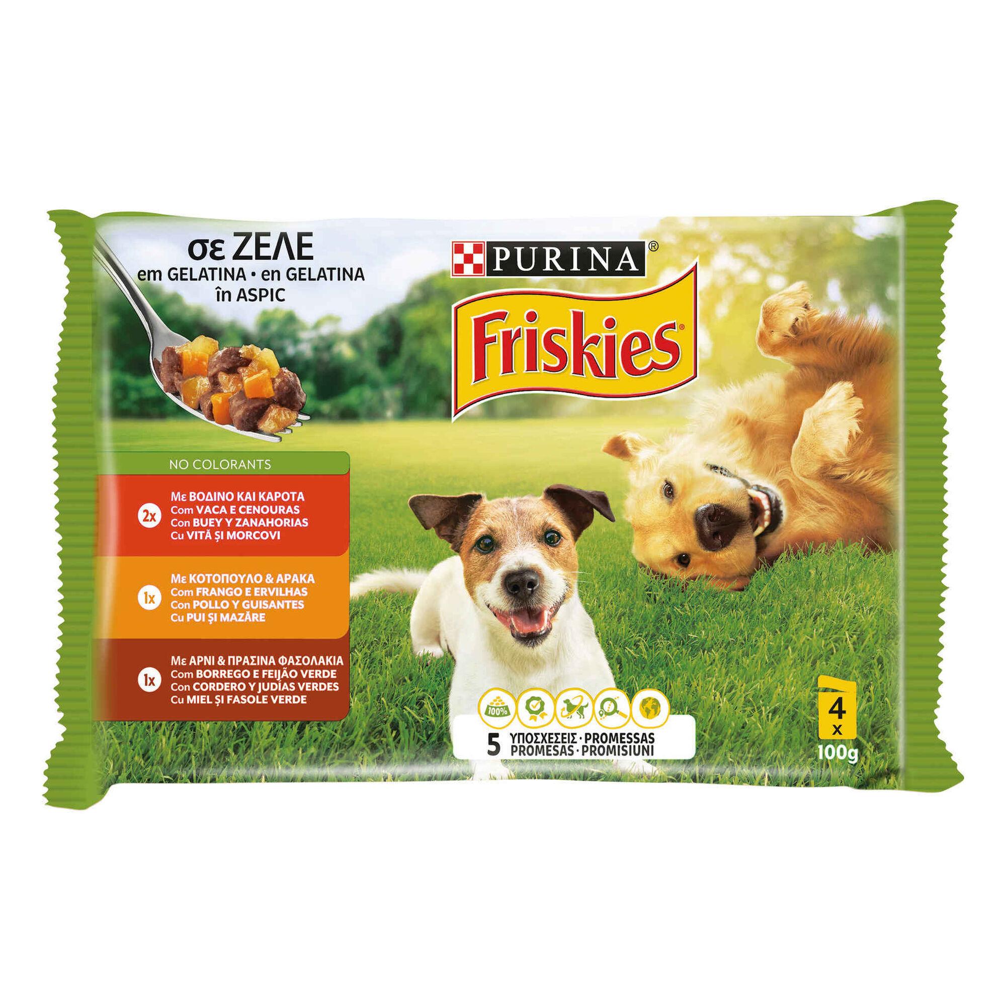 Comida Húmida para Cão Adulto Pedaços Gelatina Terrina