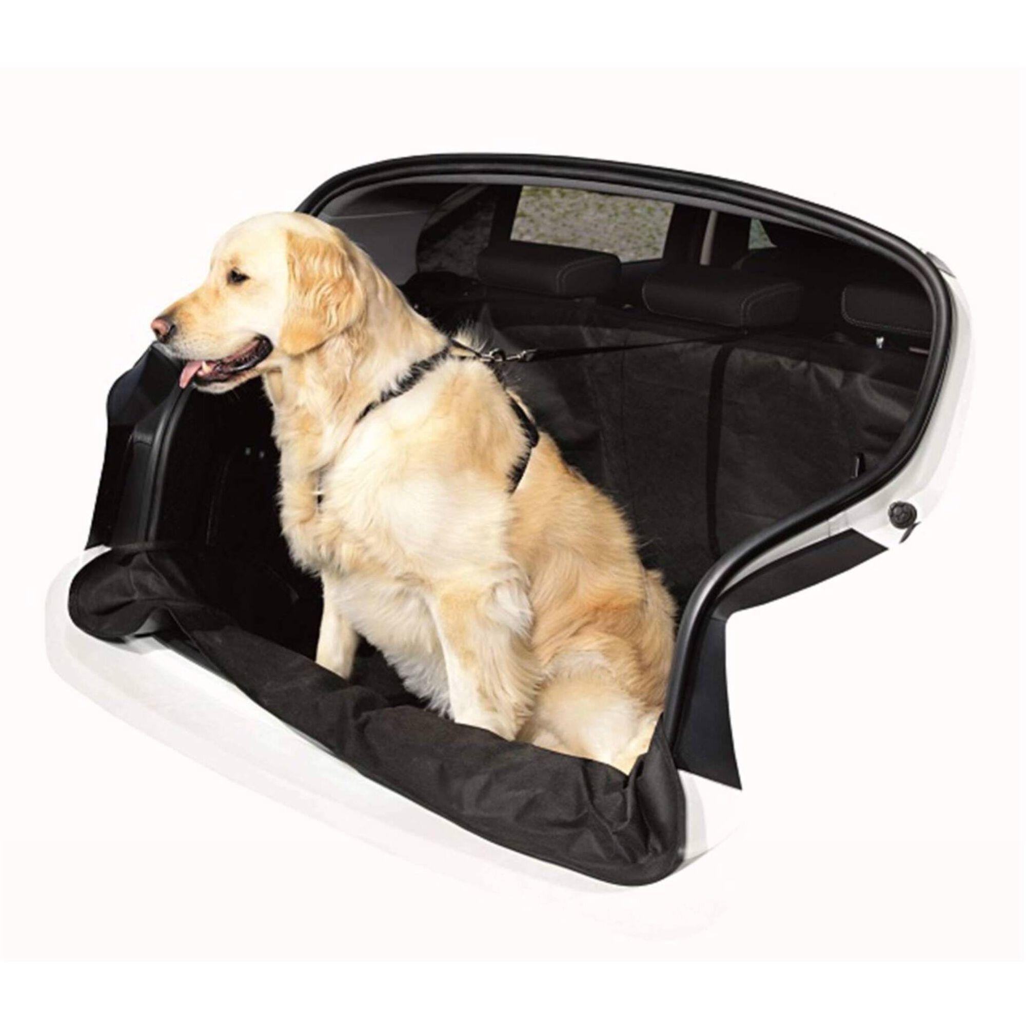 Capa para Cão com Arnês 20 mm e Trela Segurança 20 mm