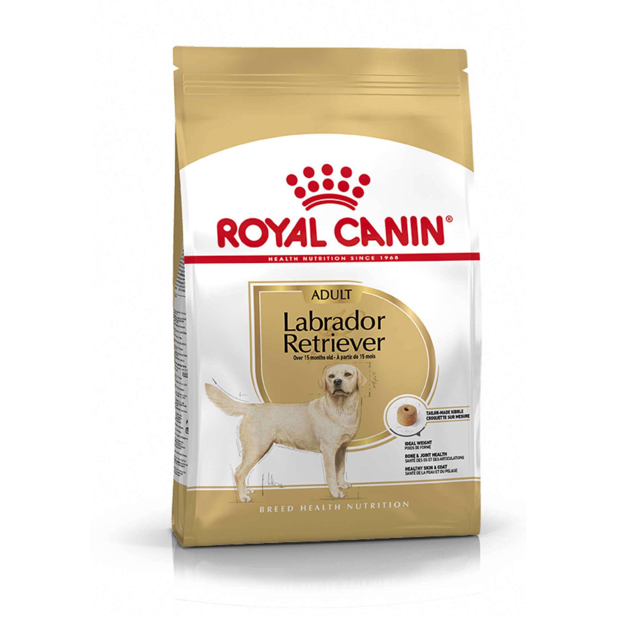 Ração para Cão Adulto Labrador Retriever