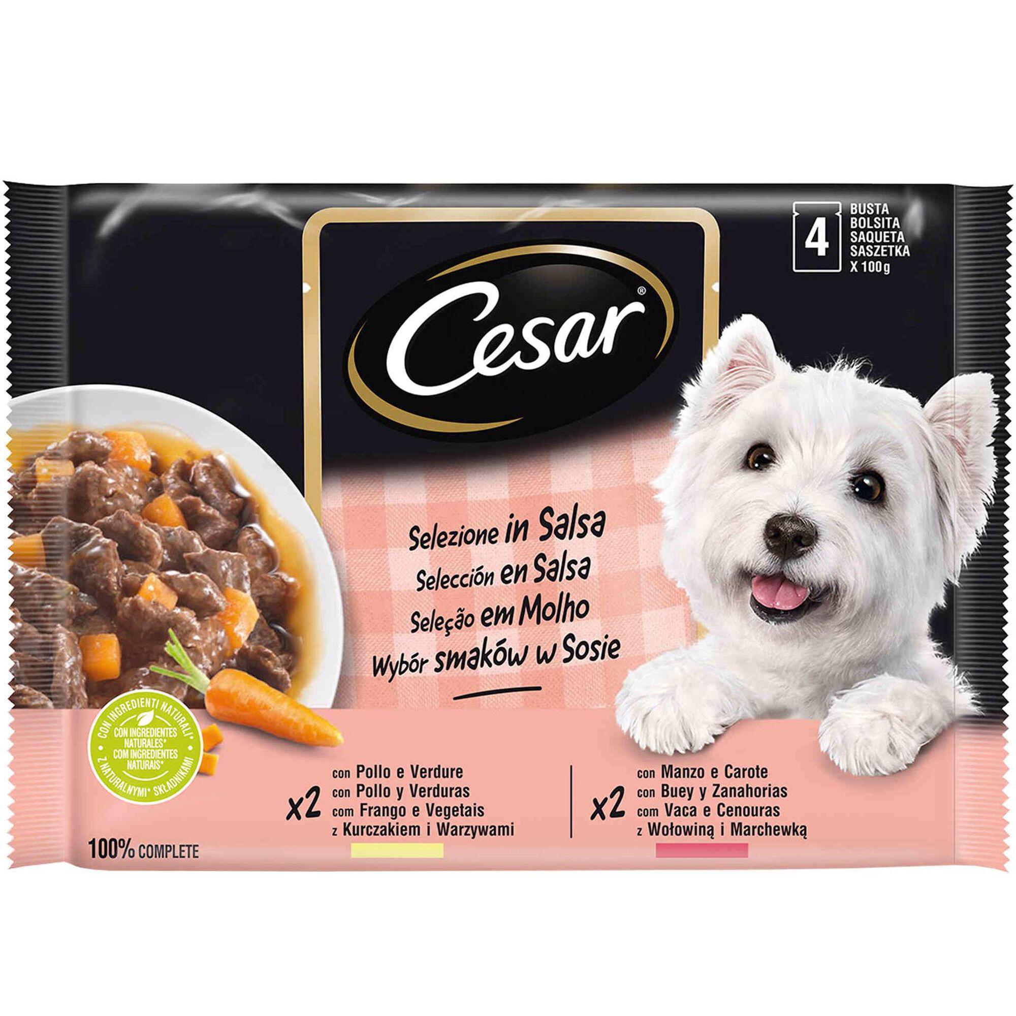 Comida Húmida para Cão em Molho Saquetas