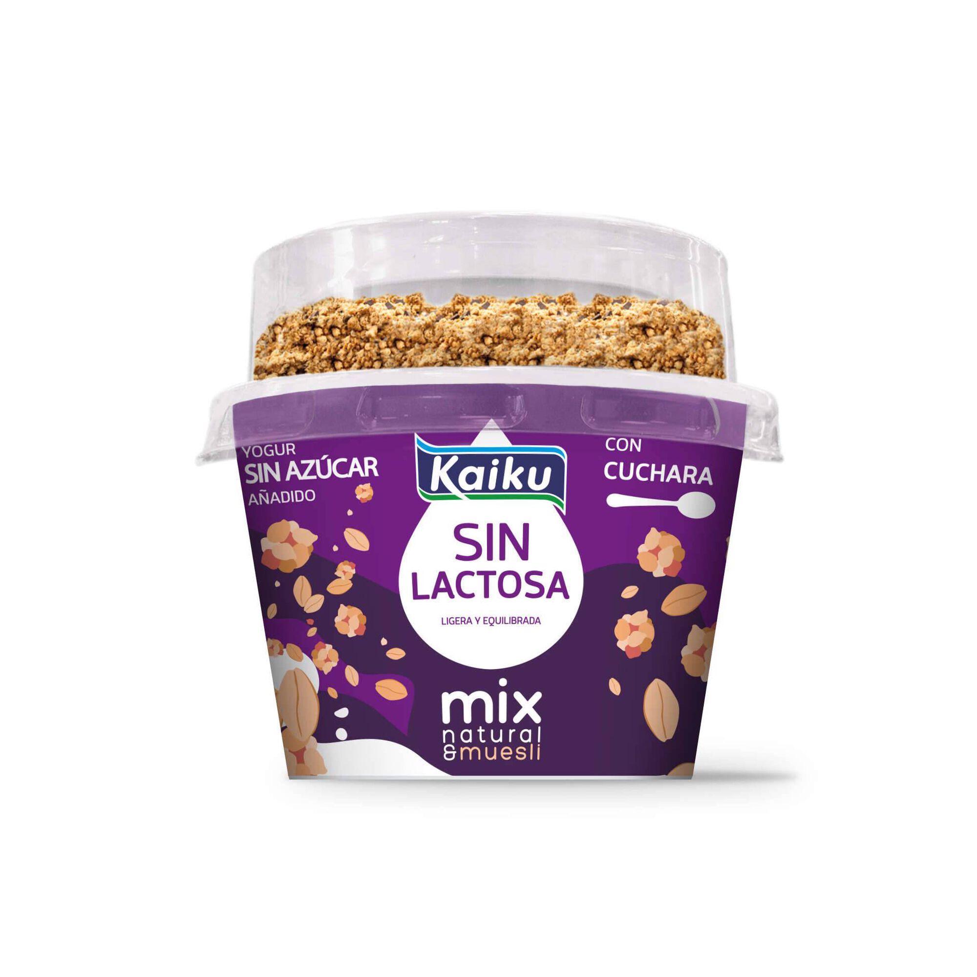 Iogurte Mix Natural sem Lactose