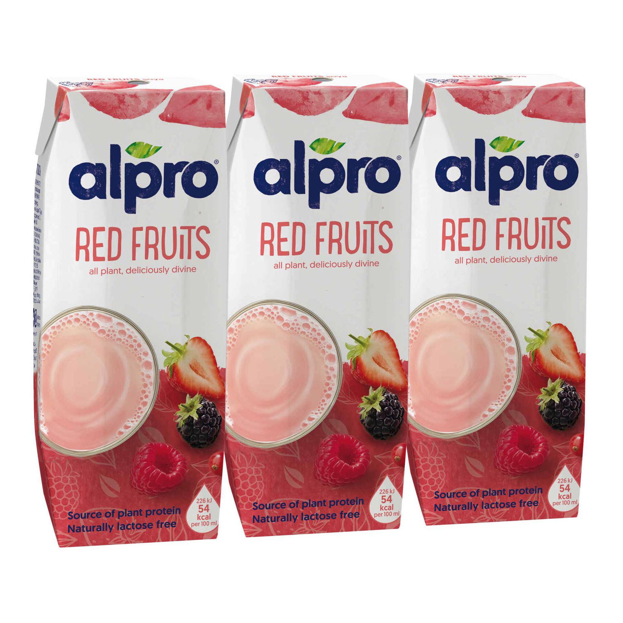 Bebida Vegetal de Soja Frutos Vermelhos sem Lactose