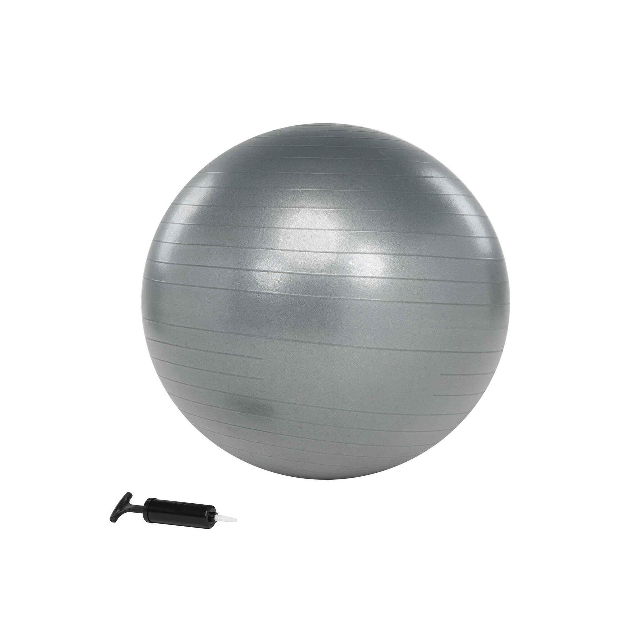 Bola de Pilates 65cm Cinza