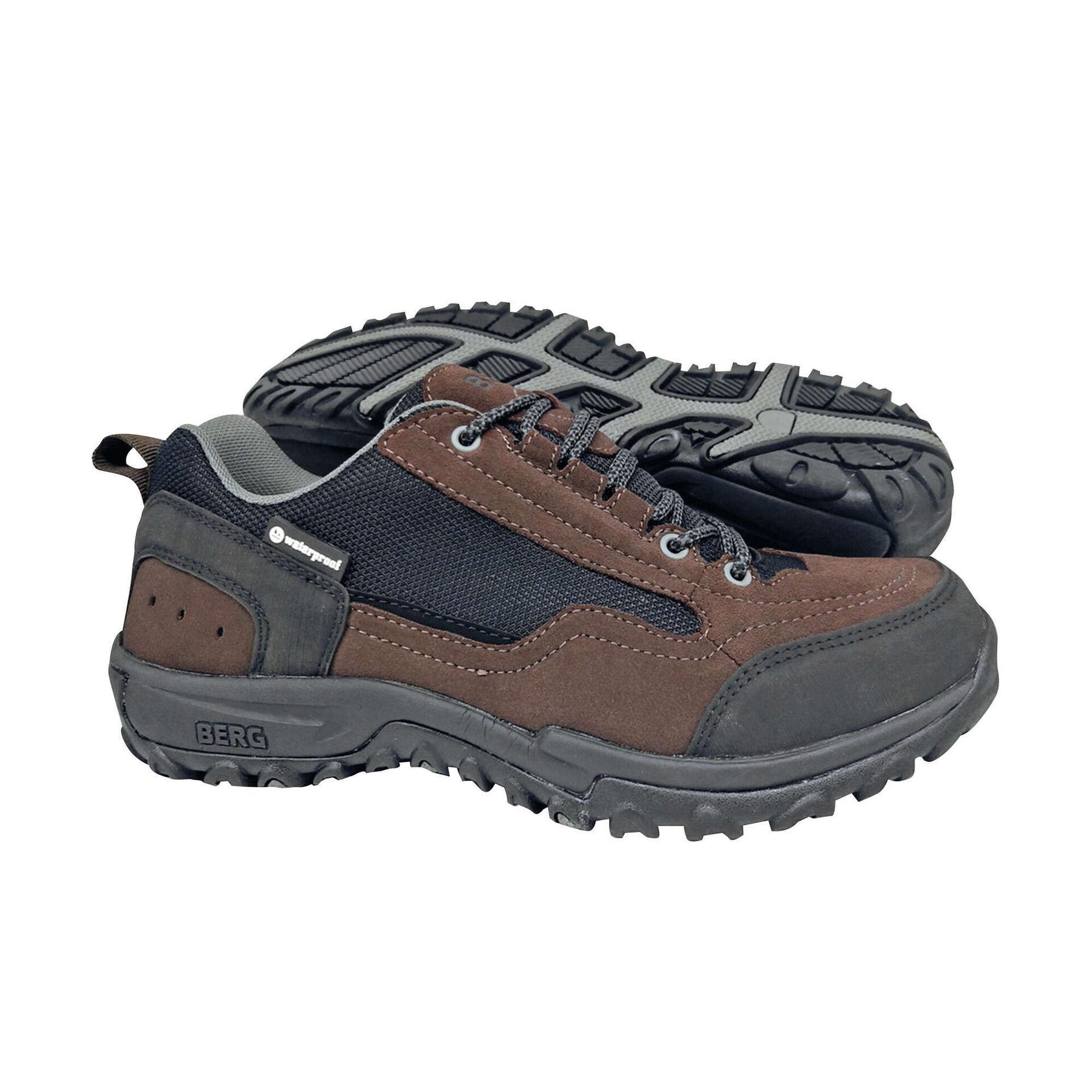 Sapatos Caminhada Impermeáveis Castanhos Hauwk