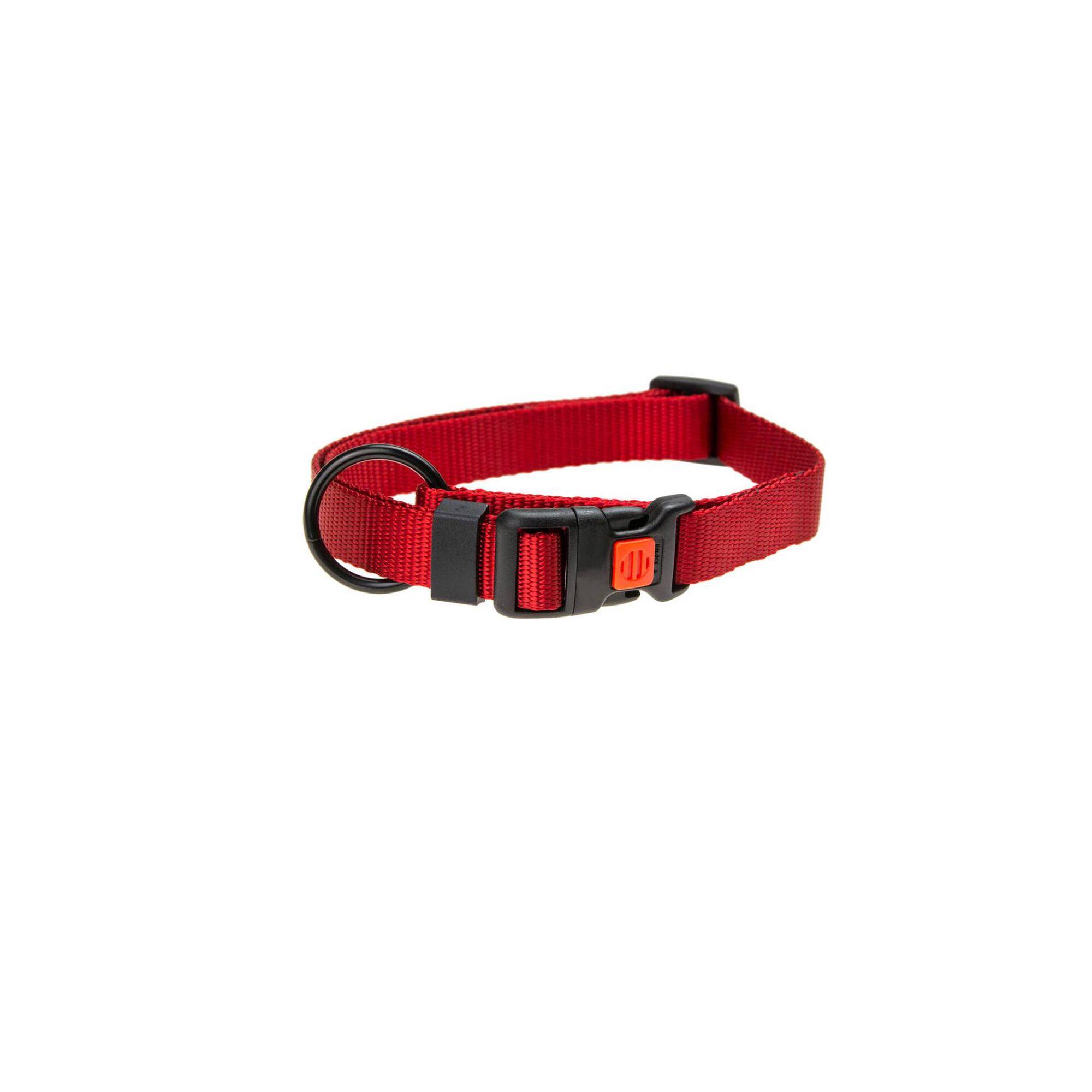 Coleira com Fecho Segurança Vermelho 25 mm x 45-65 cm