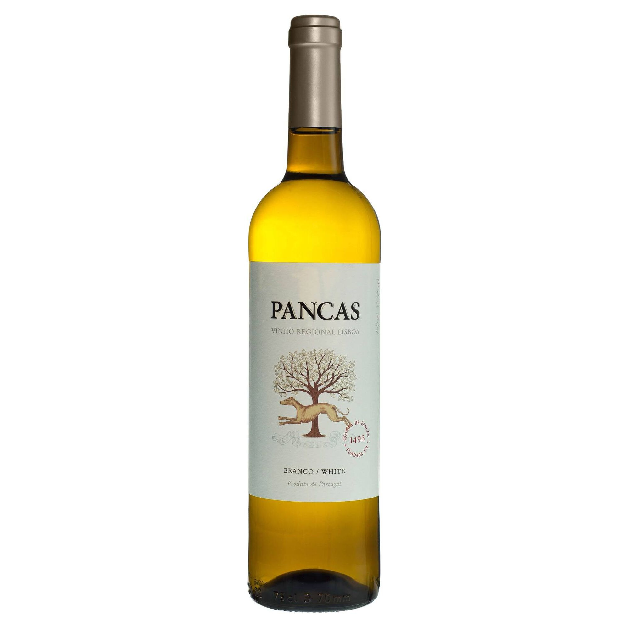 Pancas Regional Lisboa Vinho Branco