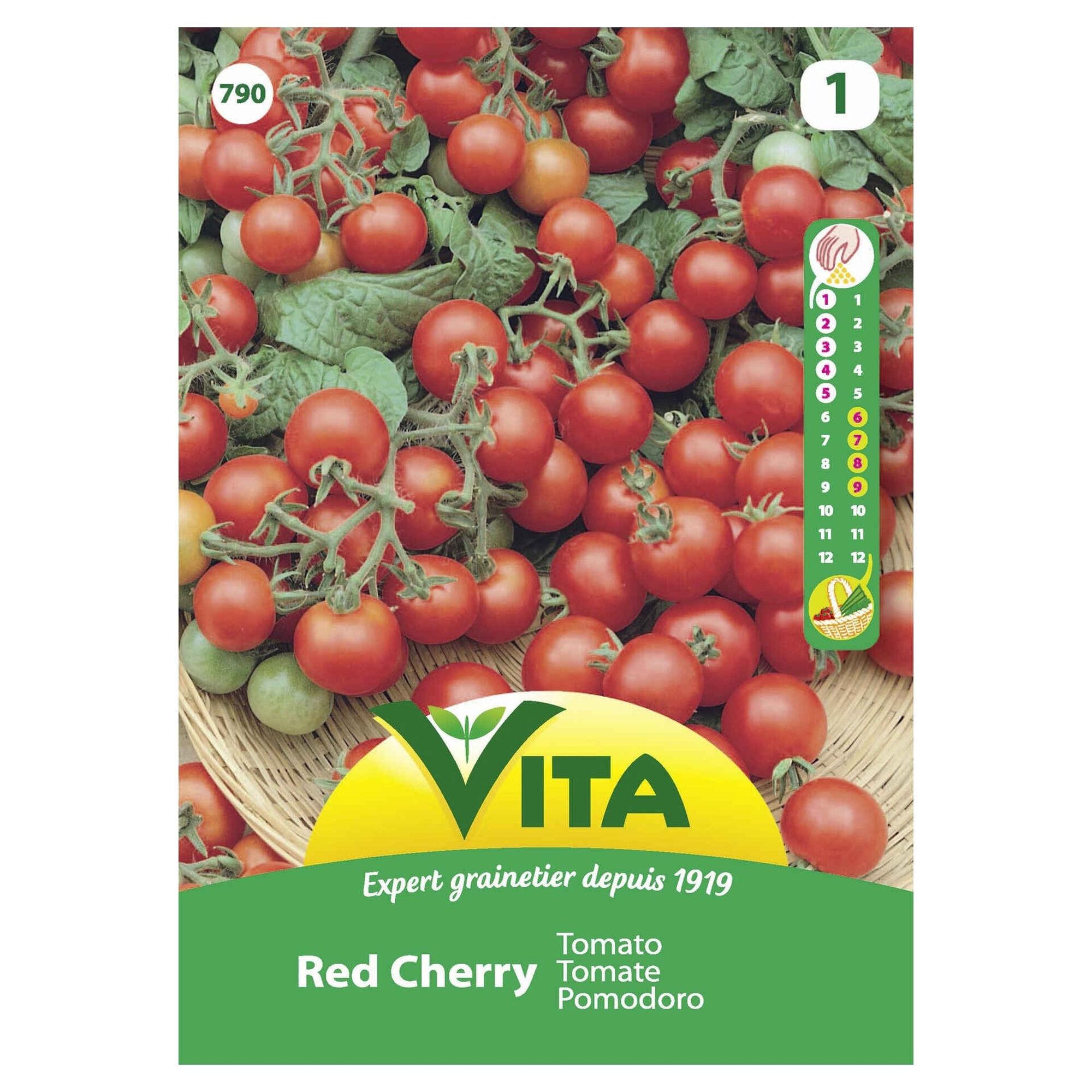 Sementes Hortícolas Tomate Cereja