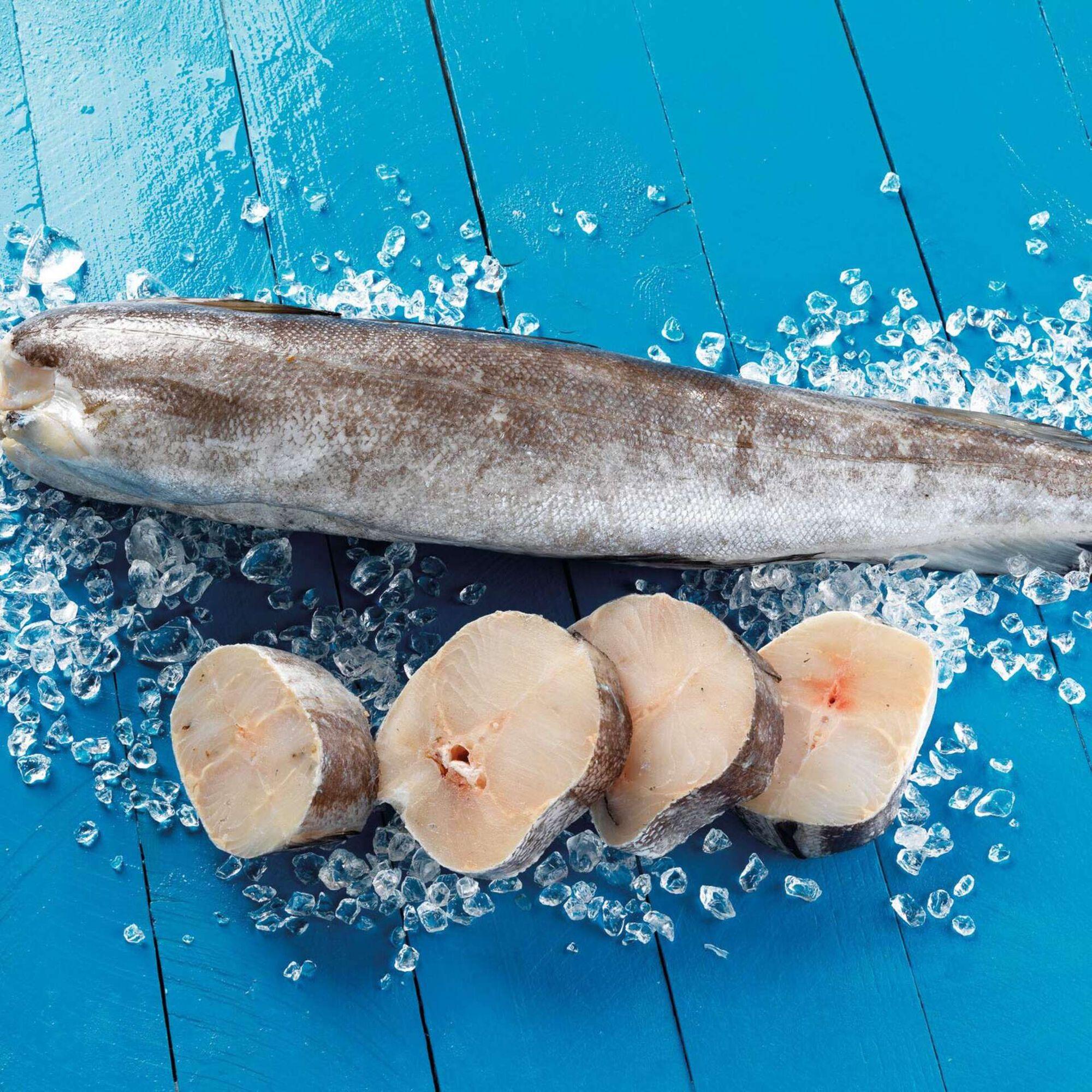 Pescada Nº 5 do Chile Congelada
