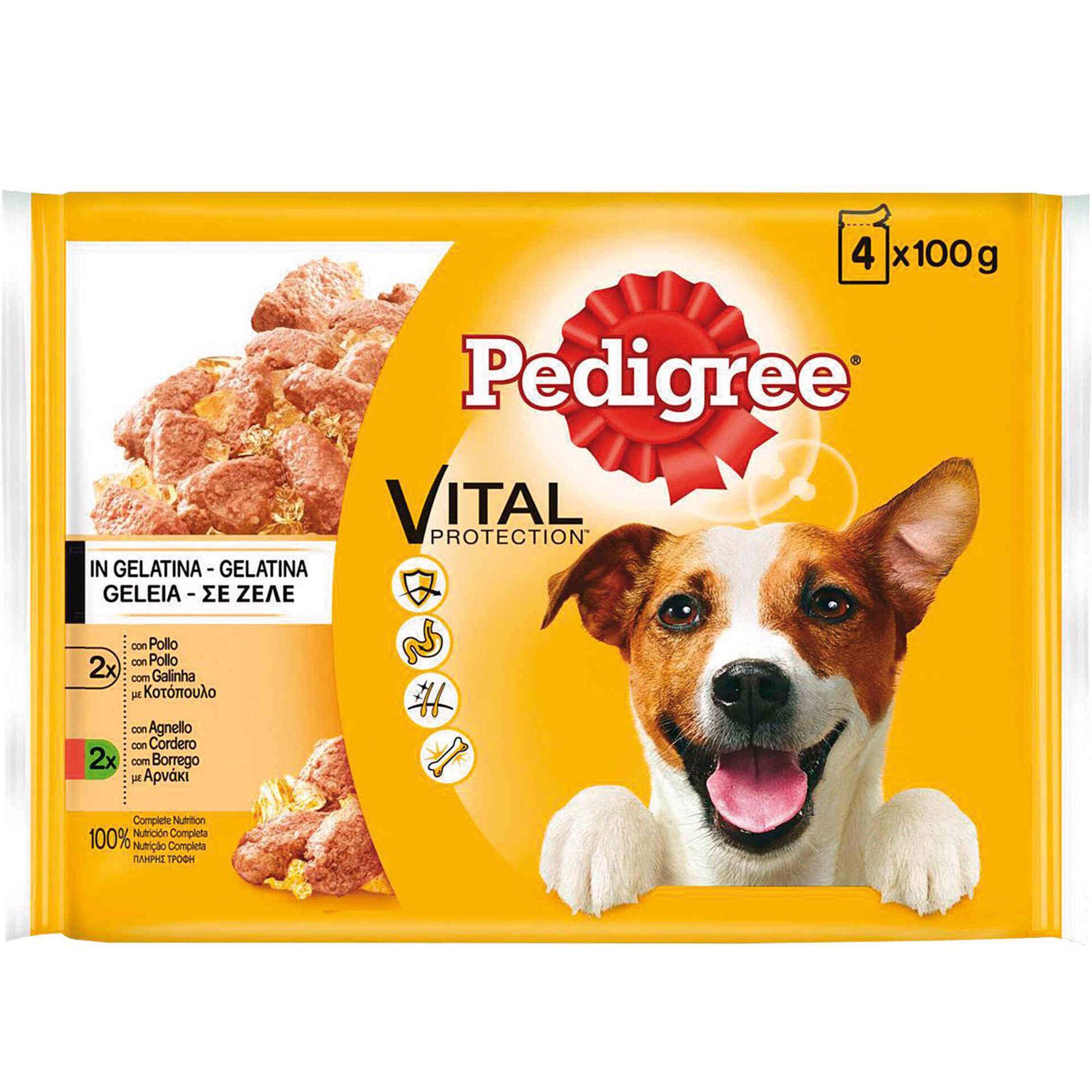 Comida Húmida para Cão Júnior, Adulto e Sénior Saquetas