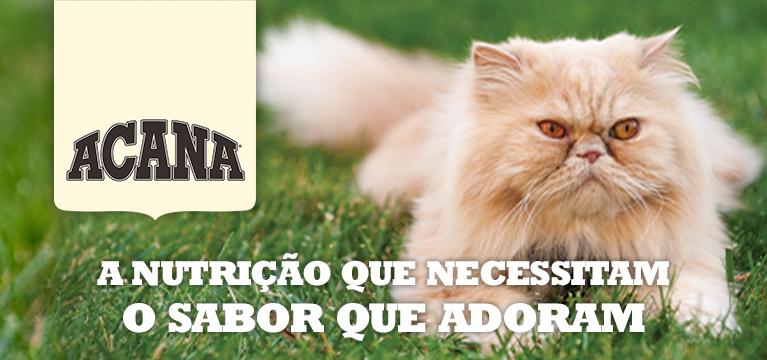 Acana Gato